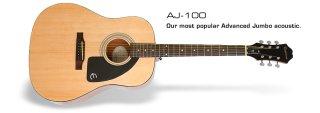 Epiphone Guitars Ltd. Ed. AJ-100 Acoustic Guitar on RigShare
