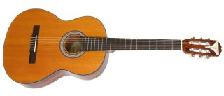 Epiphone Guitars PRO-1 Classic Acoustic on RigShare