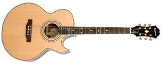 Epiphone Guitars PR-5E on RigShare