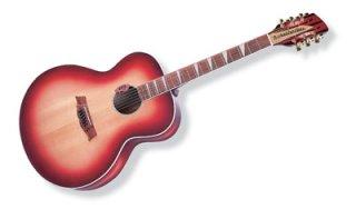 Rickenbacker Guitars and Basses Model 700C on RigShare
