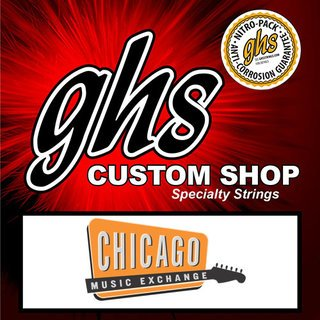 GHS Strings Chicago Music Exchange Lap Steel on RigShare