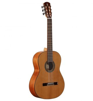 Alvarez Guitars AC65 on RigShare