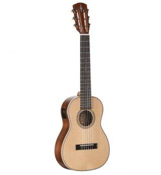 Alvarez Guitars AU70WBE/6 on RigShare