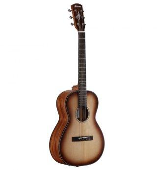 Alvarez Guitars Delta DeLite E on RigShare
