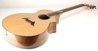 Breedlove Guitars J-22 Custom Masterclass on RigShare