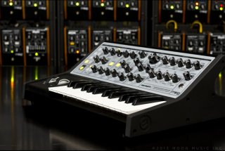 Moog Synths and Pedals Sub Phatty on RigShare